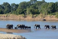 Profile de la Zambie